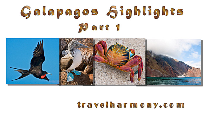 Galapagos Highlights - Part 1