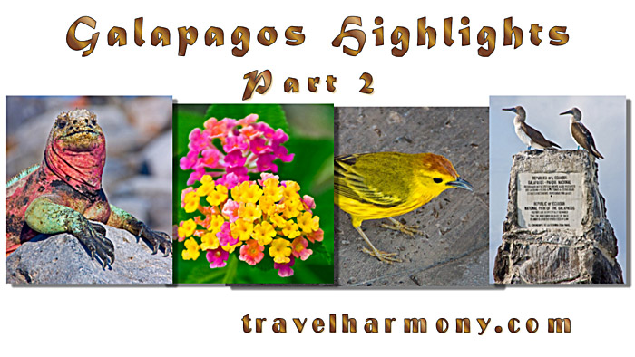 Galapagos Highlights - Part 2